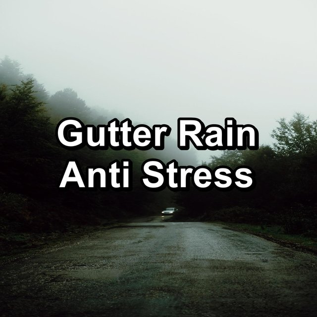 Gutter Rain Anti Stress