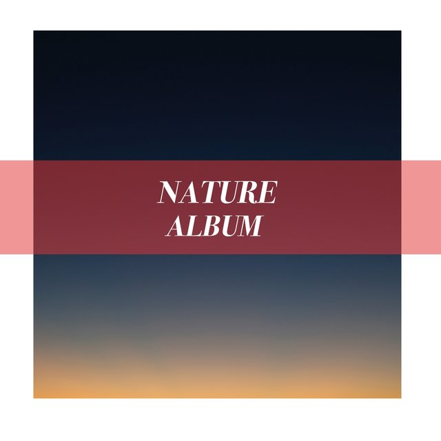 Soft Native Nature Album