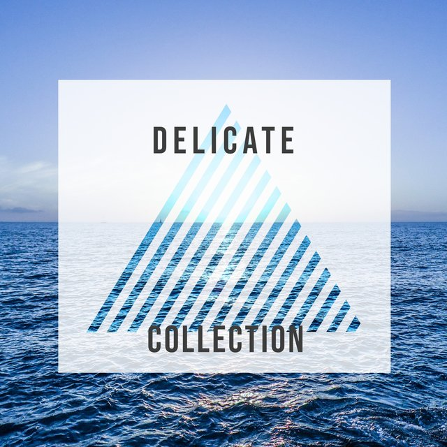 # Delicate Collection