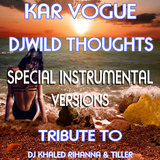 Wild Thoughts (Special Extended Instrumental Mix)