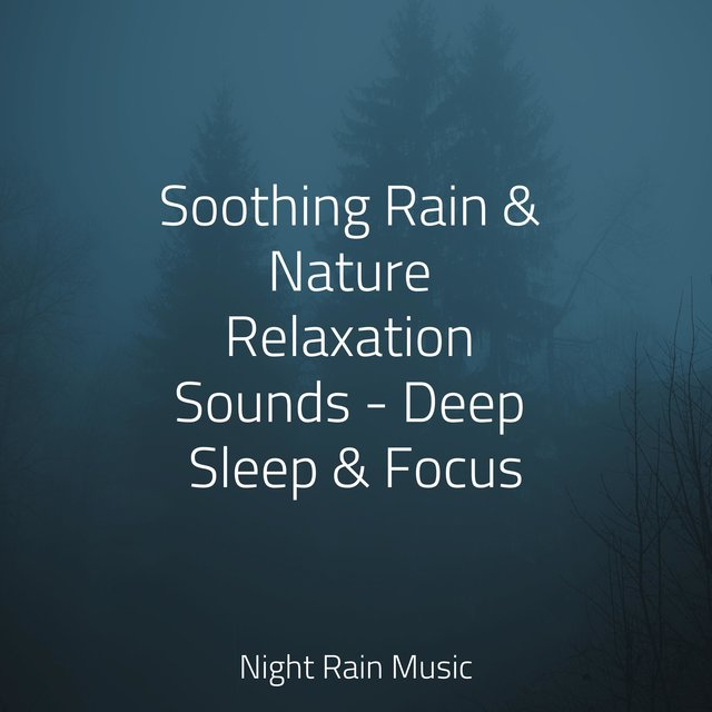 Soothing Rain & Nature Relaxation Sounds - Deep Sleep & Focus