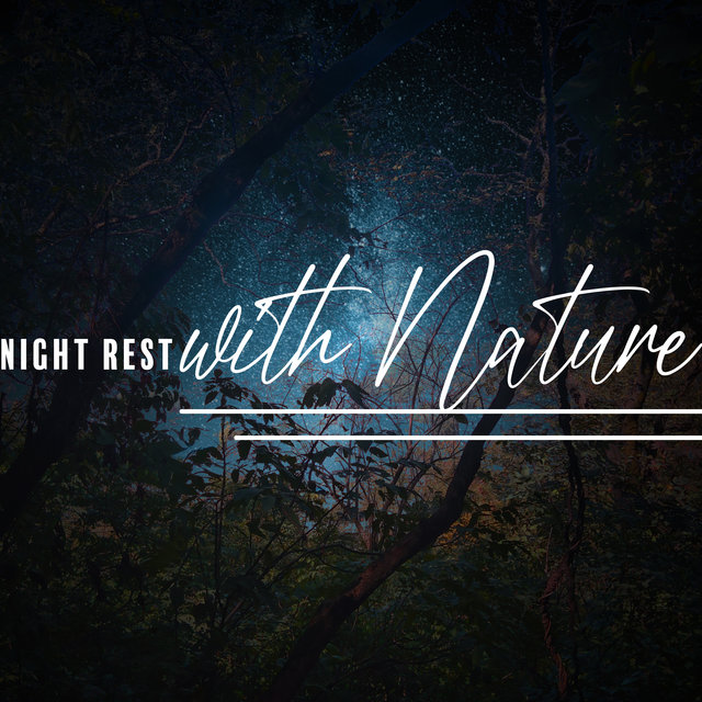 Night Rest with Nature – Most Beautiful Nature Sounds Collection for Deep Sleep, Therapy for Relaxation, Starry Night, Best Sleep Aid, Stress Free, Woodland Escape