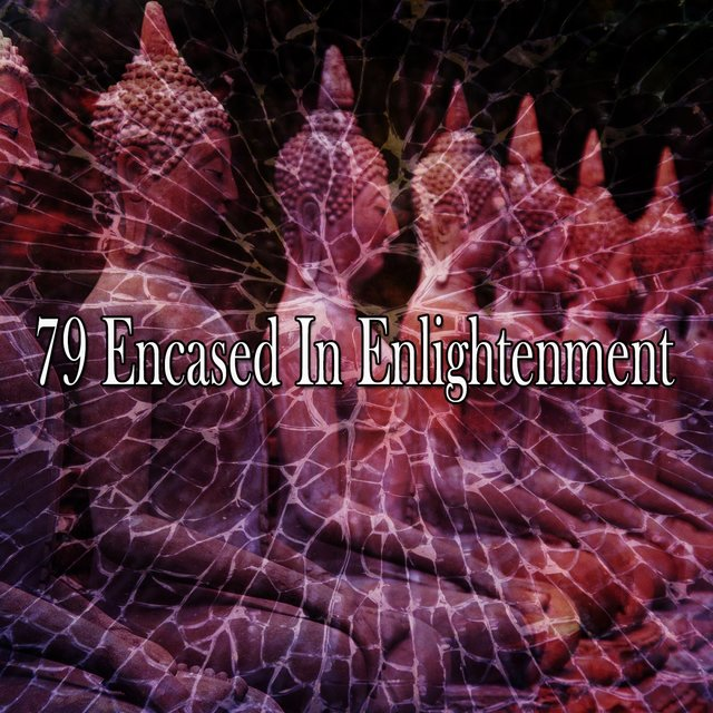 79 Encased in Enlightenment