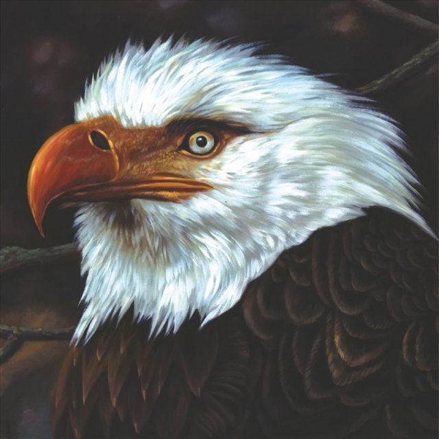 Cover art for album The Hawk Is Howling by Mogwai