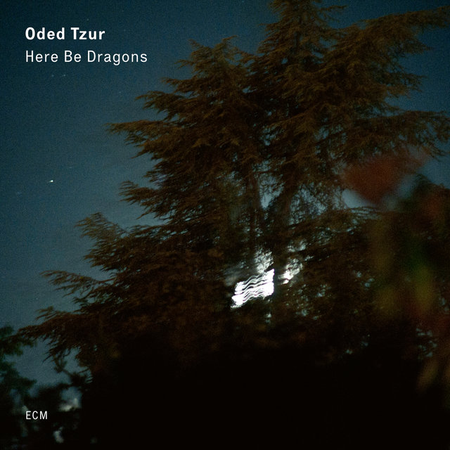 Cover art for album Here Be Dragons by Oded Tzur