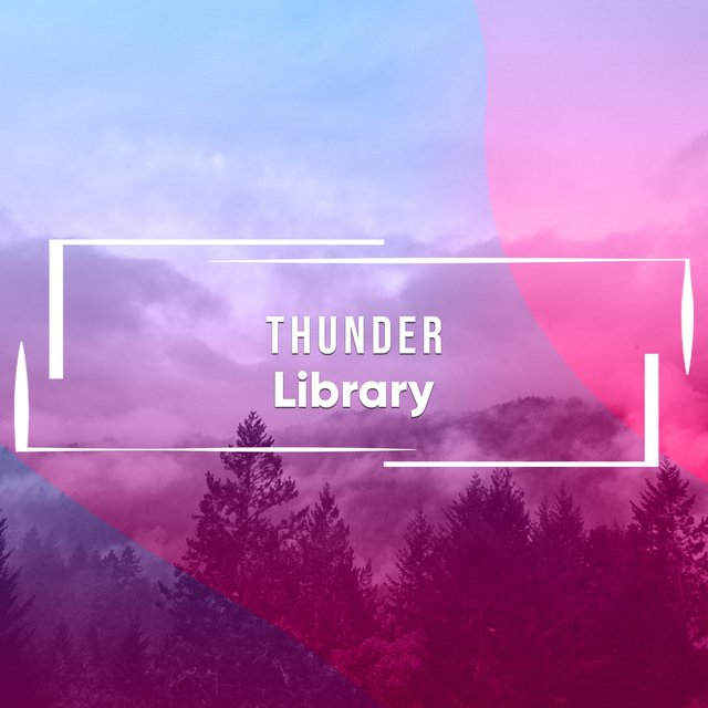 Quiet Thunder Storm Library