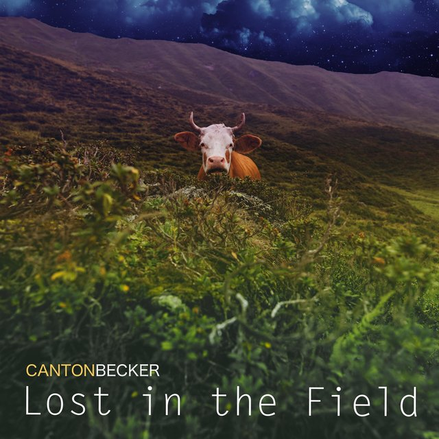 Lost in the Field