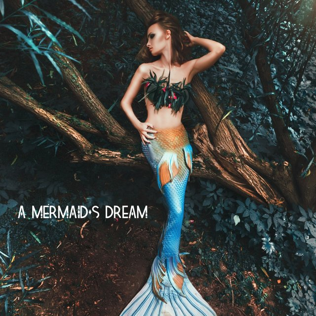 A Mermaid's Dream