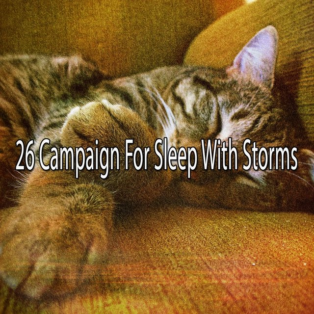 26 Campaign for Sleep with Storms
