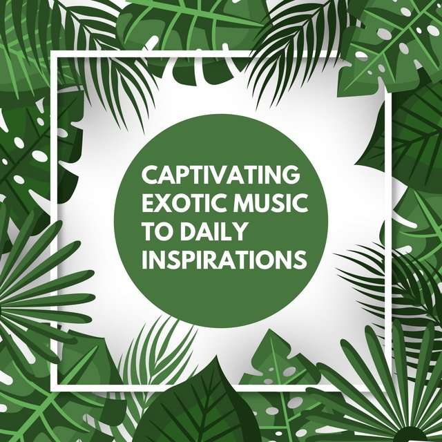 Captivating Exotic Music to Daily Inspirations