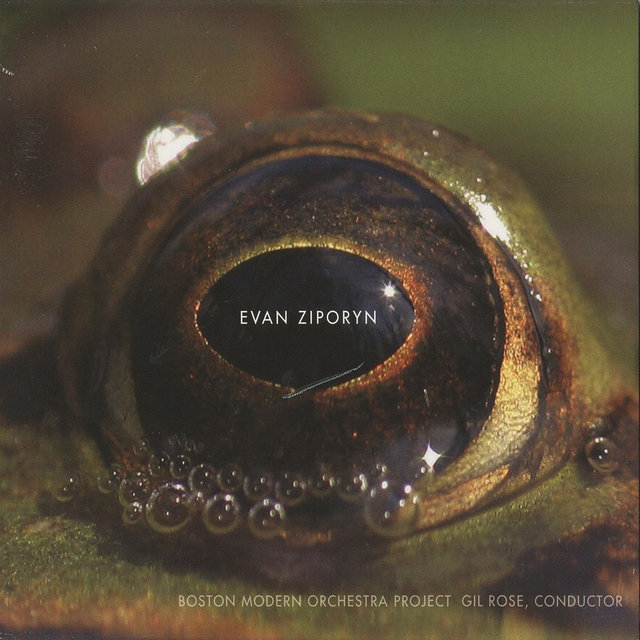 Evan Ziporyn: Frog's Eye