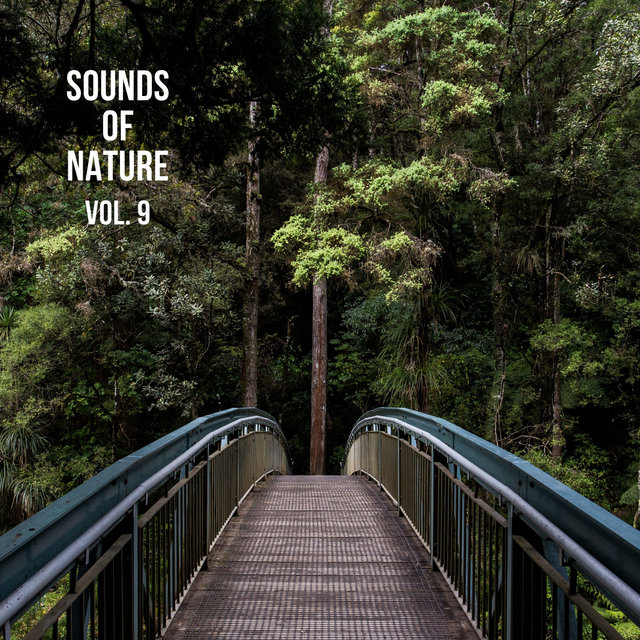 Nature Sounds Vol. 9, Nature Music to Sleep