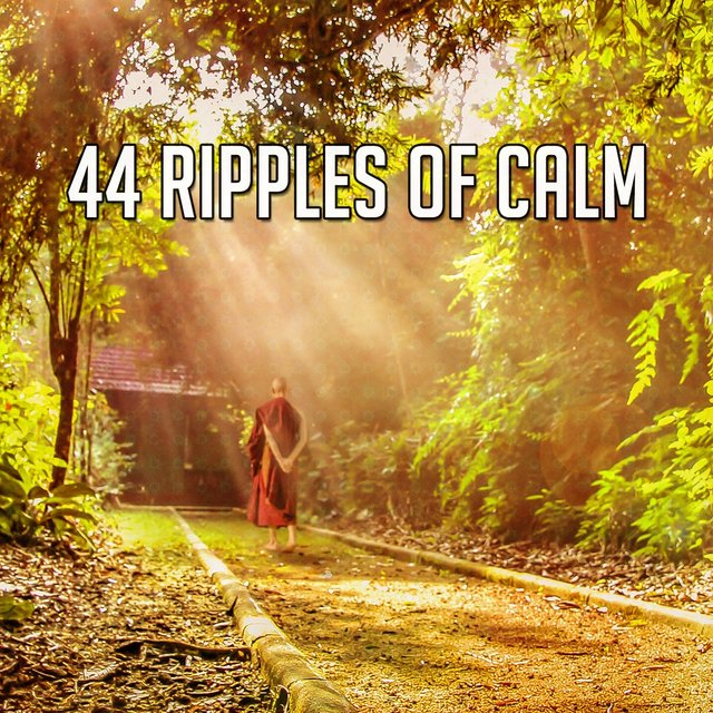 44 Ripples of Calm
