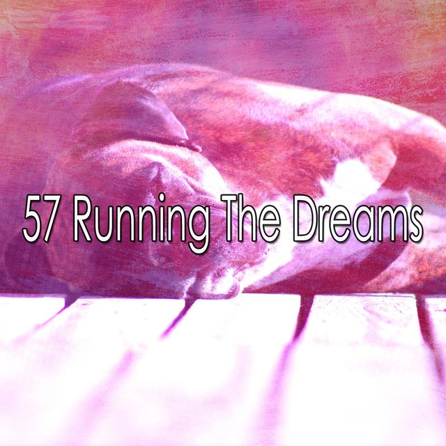 57 Running the Dreams