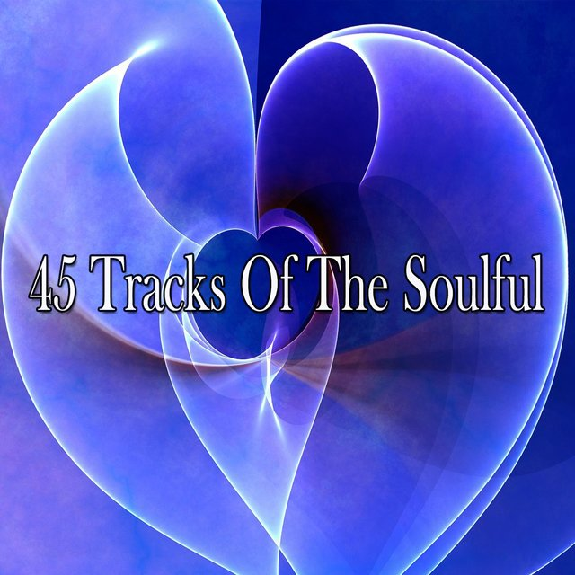 45 Tracks of the Soulful