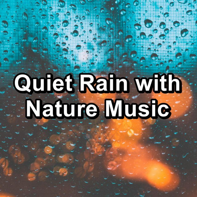 Quiet Rain with Nature Music
