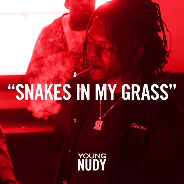 Snakes In My Grass