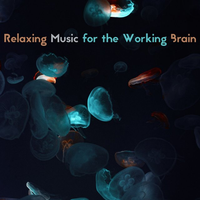 Relaxing Music for the Working Brain