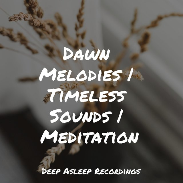 Dawn Melodies | Timeless Sounds | Meditation