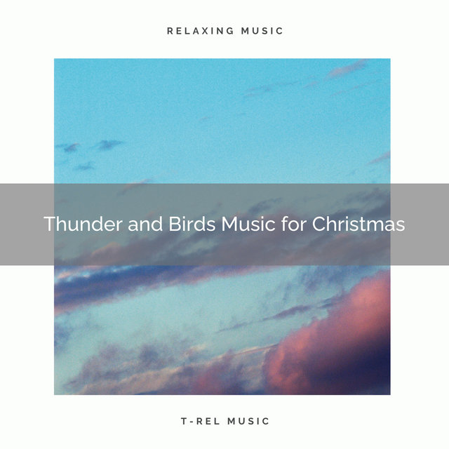 Thunder and Birds Music for Christmas