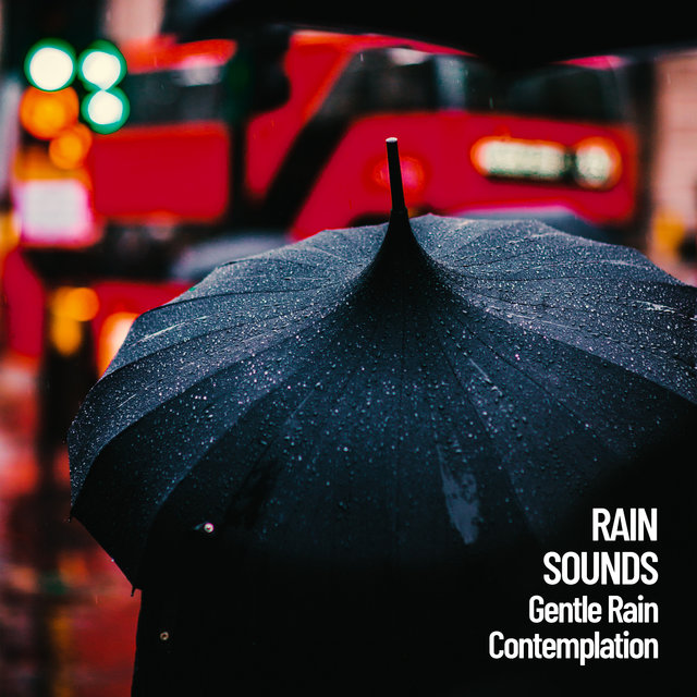 Rain Sounds: Gentle Rain Contemplation