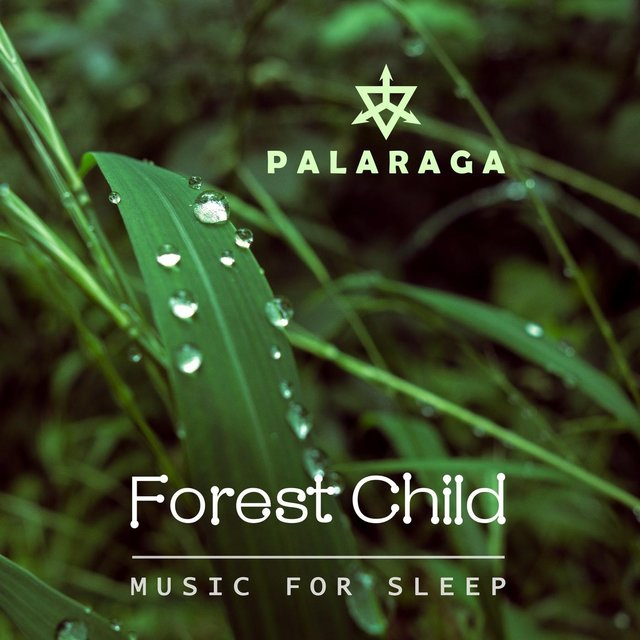 Forest Child (Music for Sleep)