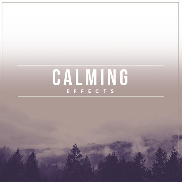 # 1 Album: Calming Effects