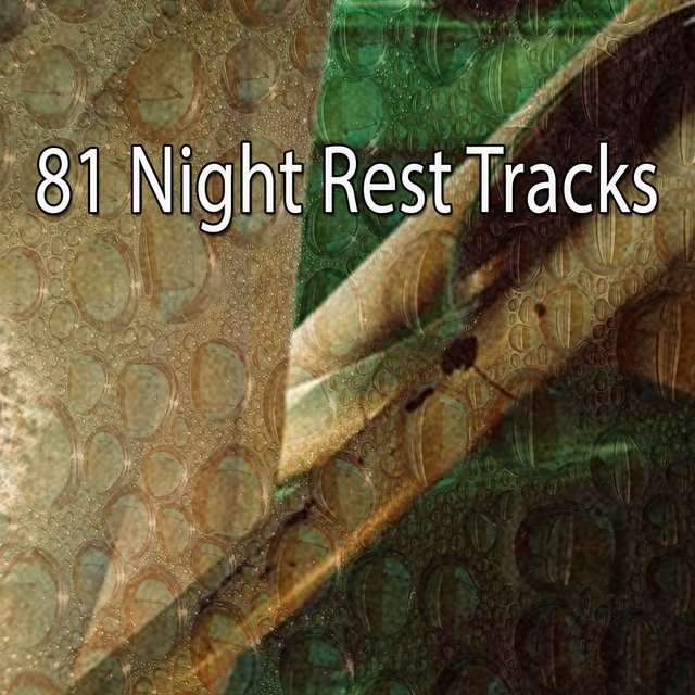81 Night Rest Tracks