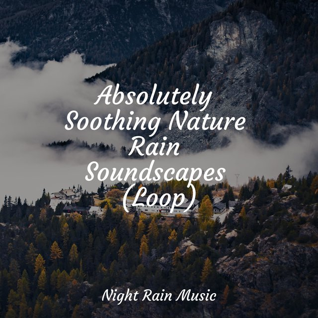 Absolutely Soothing Nature Rain Soundscapes (Loop)
