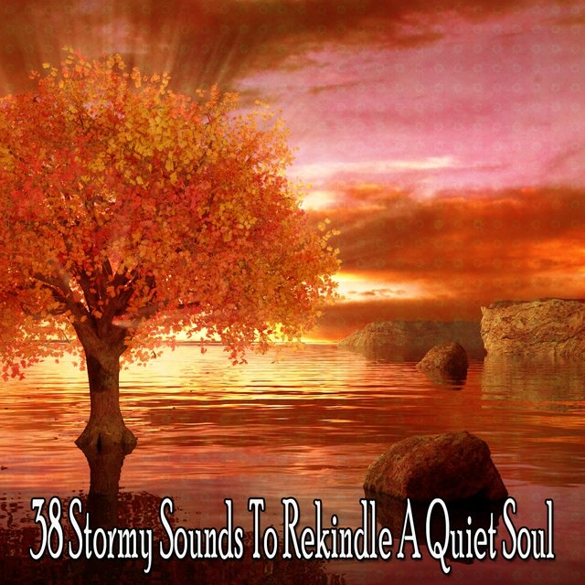 38 Stormy Sounds to Rekindle a Quiet Soul