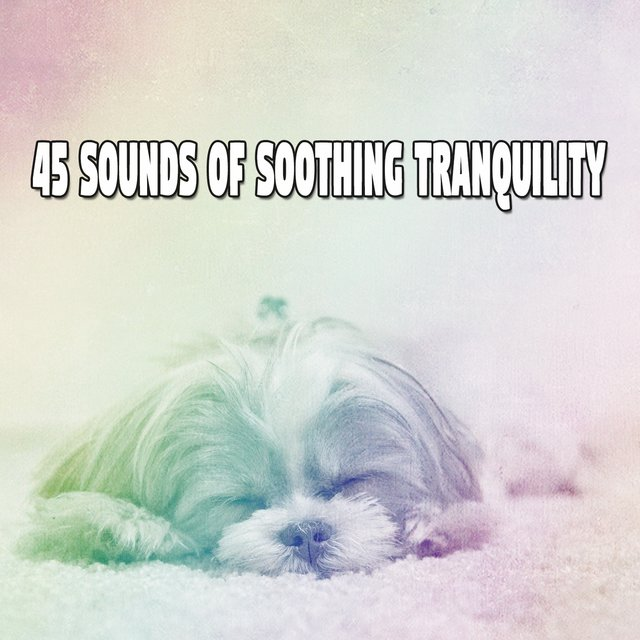 45 Sounds of Soothing Tranquility