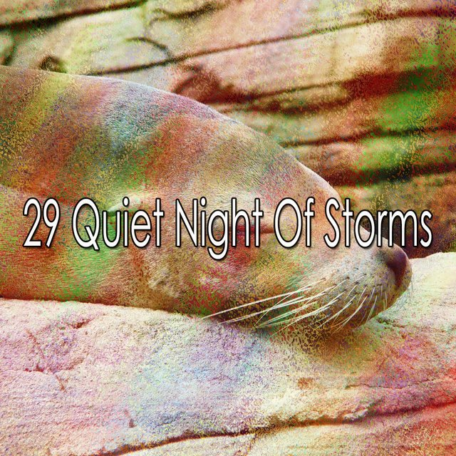 29 Quiet Night of Storms