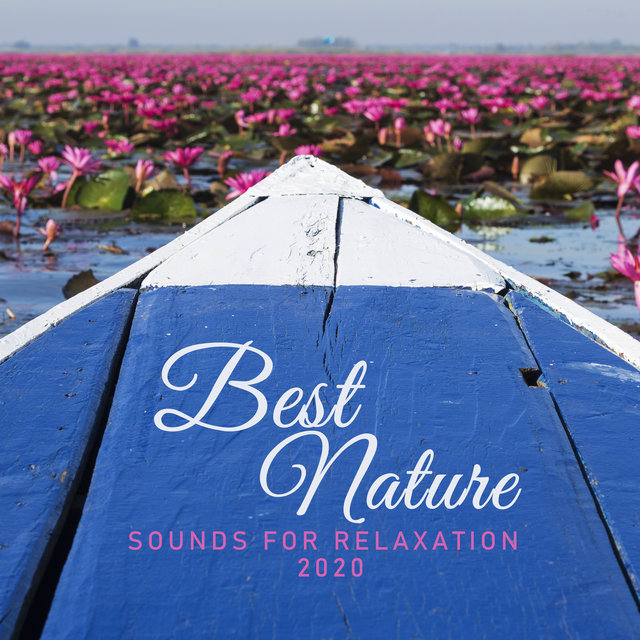 """Best Nature Sounds for Relaxation 2020"""