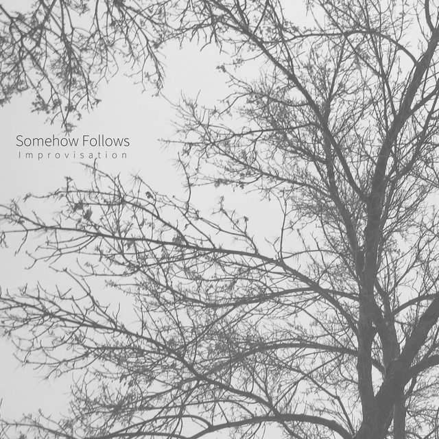 Somehow Follows (Improvisation)