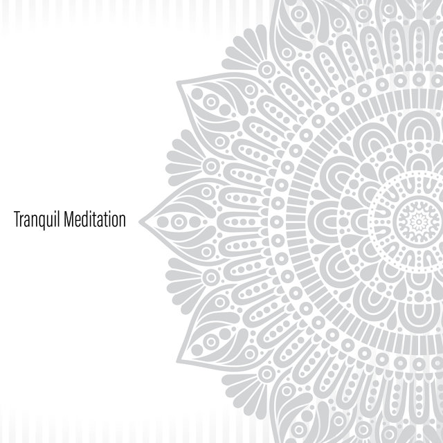 Tranquil Meditation - Sounds of Nature Combined with Instrumental Sounds for Better Relaxation During Meditation