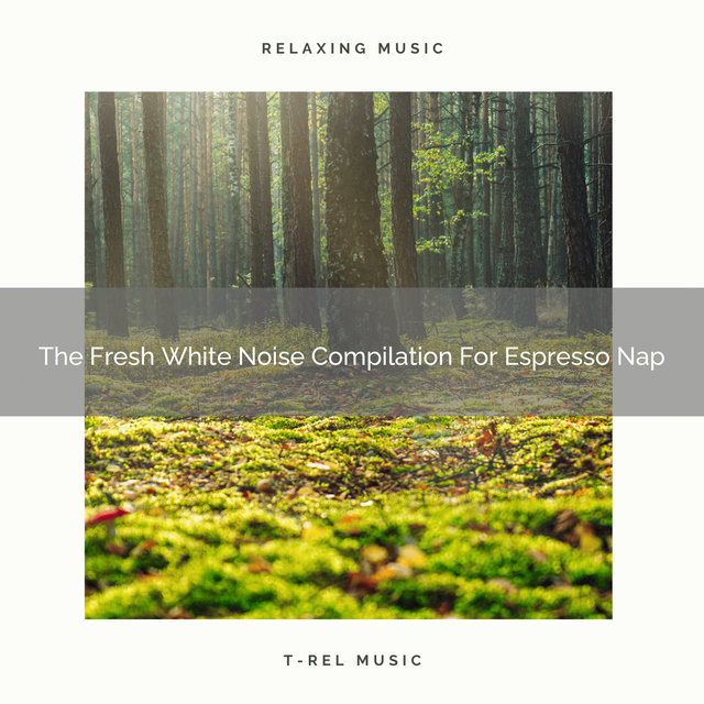 The Fresh White Noise Compilation For Espresso Nap