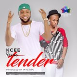 Tender (feat. Tekno)