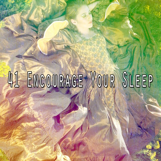 41 Encourage Your Sle - EP