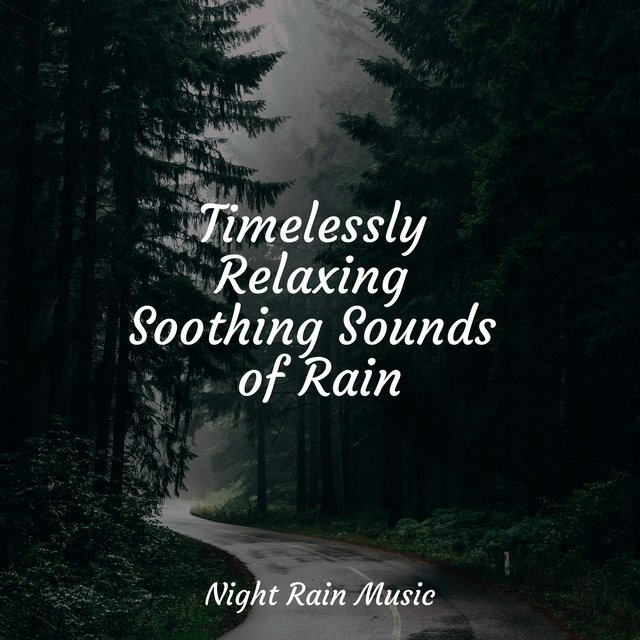 Timelessly Relaxing Soothing Sounds of Rain
