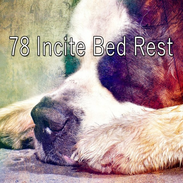 78 Incite Bed Rest
