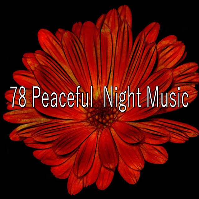 78 Peaceful Night Music