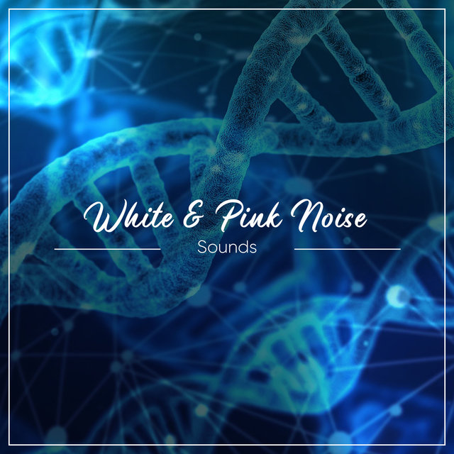 #5 White & Pink Noise Sounds for Concentration
