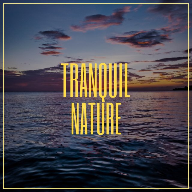 # Tranquil Nature