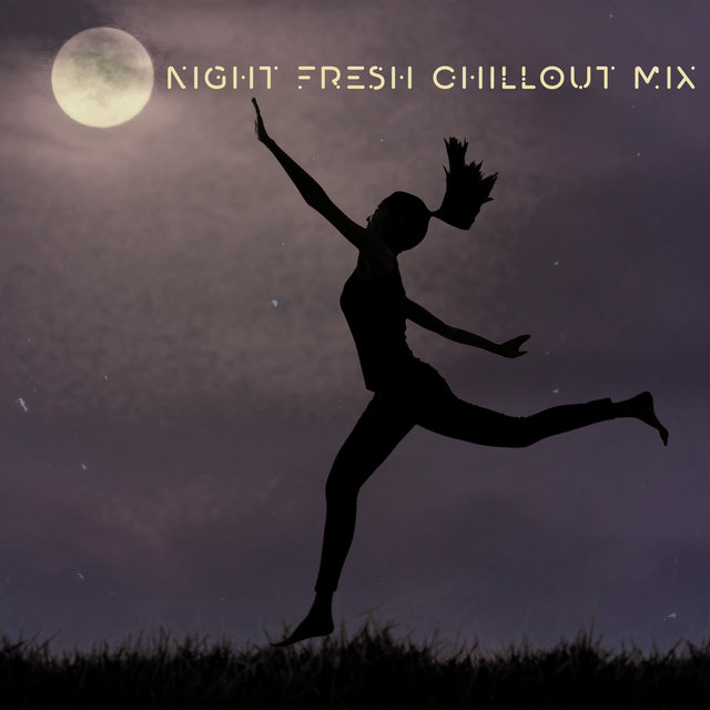 Night Fresh Chillout Mix – 2020 Chillout Electronic Music Mix for Summer Relaxation, Deep Beach Vibes, Songs Perfect for Summer Holiday