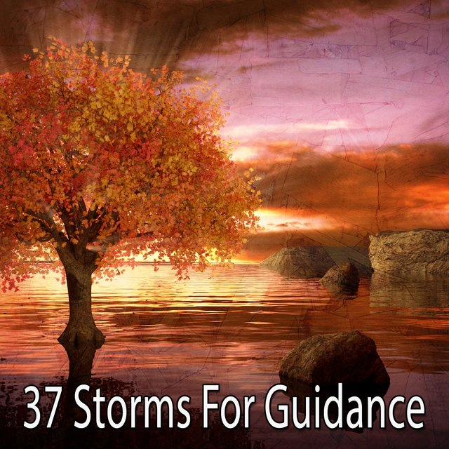 37 Storms for Guidance
