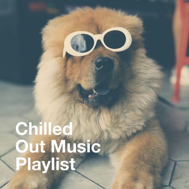 Chilled out Music Playlist