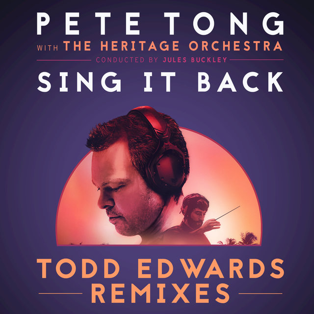 Sing It Back (Todd Edwards Remixes)