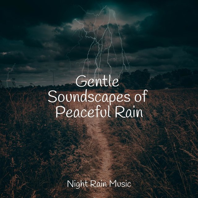Gentle Soundscapes of Peaceful Rain