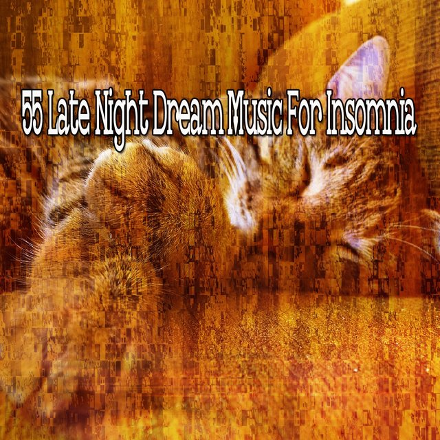 55 Late Night Dream Music for Insomnia