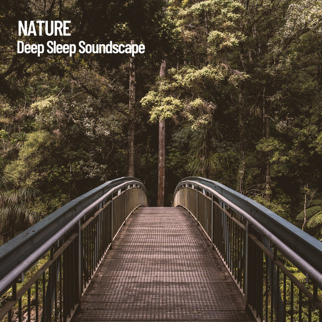 Nature: Deep Sleep Soundscape
